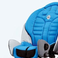 Stingray-bleu
